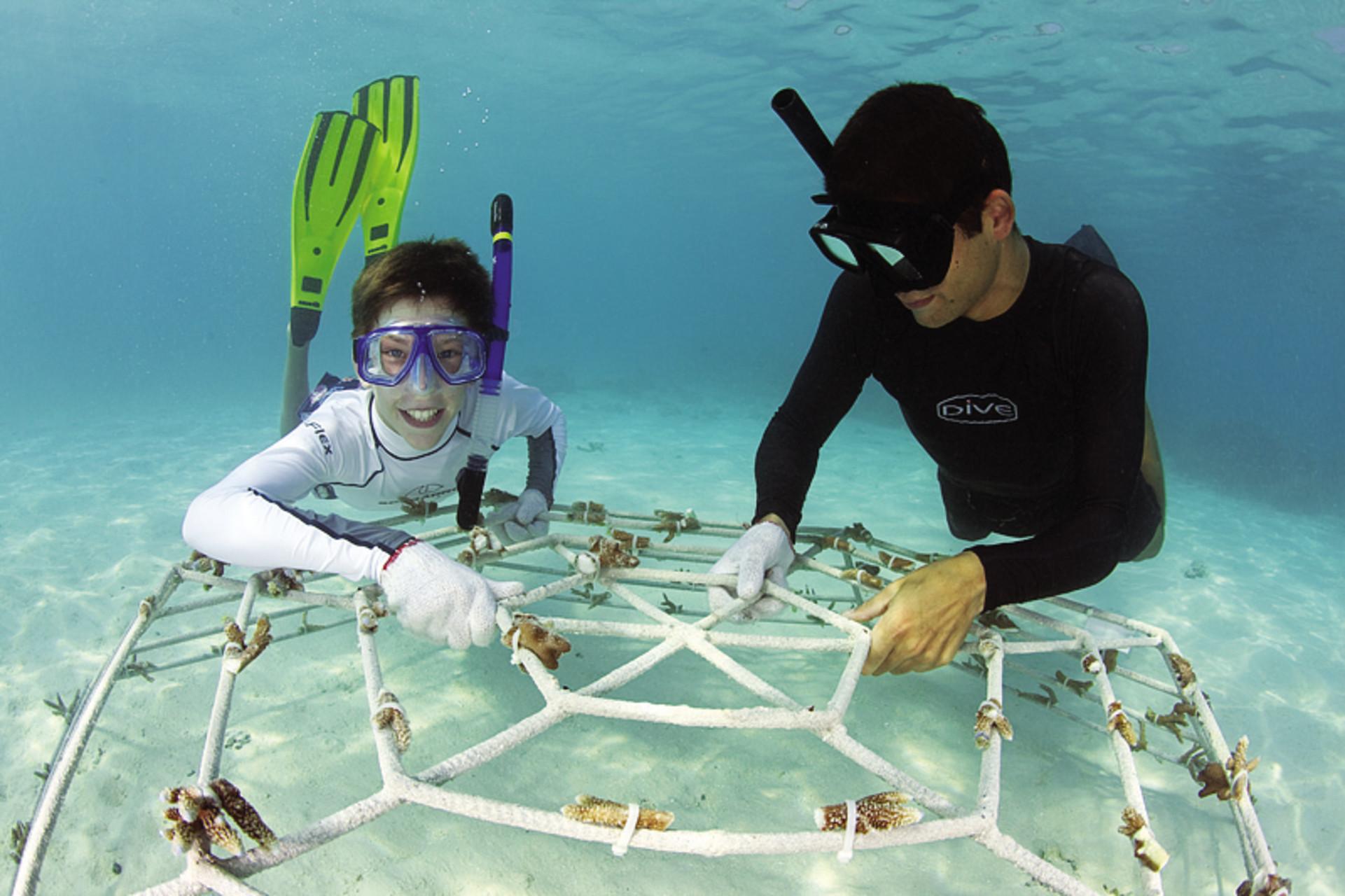 """Umwelt – Malediven – """"Ein gefährdetes Tauchparadies"""""""