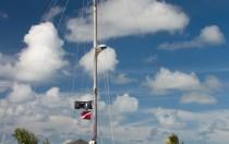 Segelboot Morning Star Blackbeard