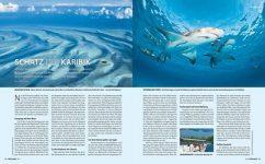 Tauchen auf den Bahamas – Schatz der Karibik in der Unterwasser