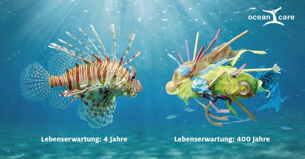 OceanCare Plastikkampagne Feuerfisch