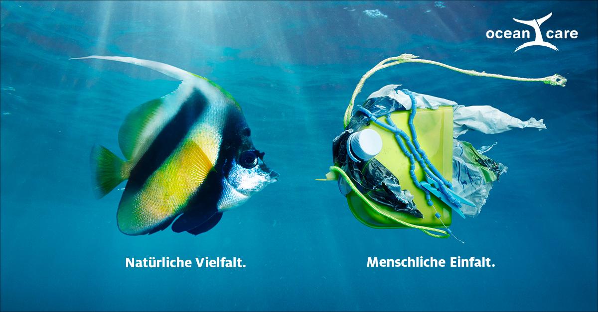 OceanCare Plastikkampagne Wimpelfisch
