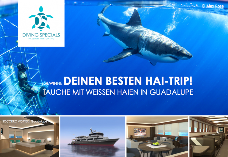 Info – Mr. Diving Specials gesucht!